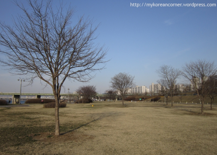 2013.03.29 Hangang Park (Jamsil)